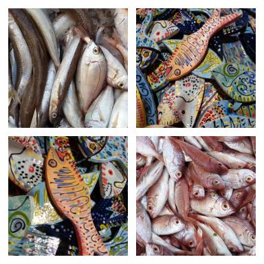 דגים מקרמיקה בהשראת דגים מהים... | איריס עשת כהן