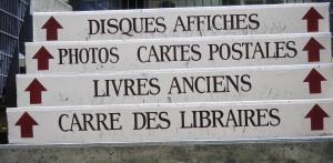 אומנות צרפתית, איריס עשת כהן